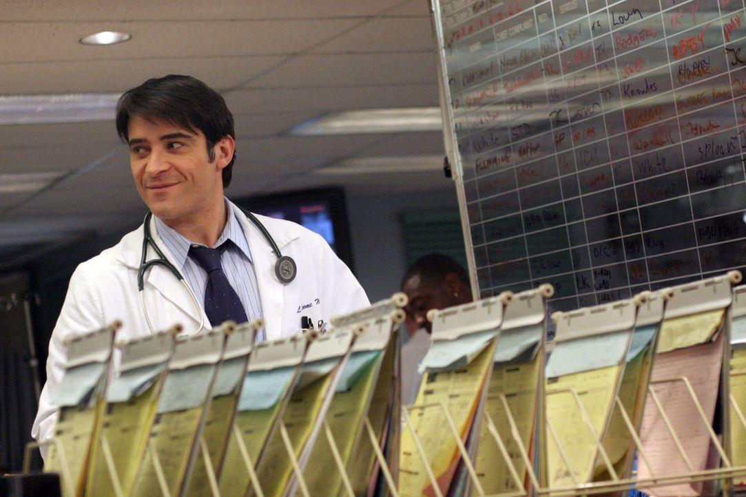 Ahnt noch nicht, dass sich Neela in ihn verliebt hat: Dr. Luka Kovac (Goran Visnjic) ... - Bildquelle: WARNER BROS