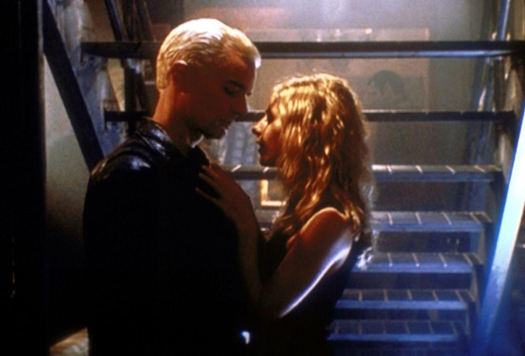 Buffy (Sarah Michelle Gellar, r.) ist nicht sie selbst. Sie wirft sich Spike (James Marsters, l.) an den Hals ... - Bildquelle: TM +   2000 Twentieth Century Fox Film Corporation. All Rights Reserved.