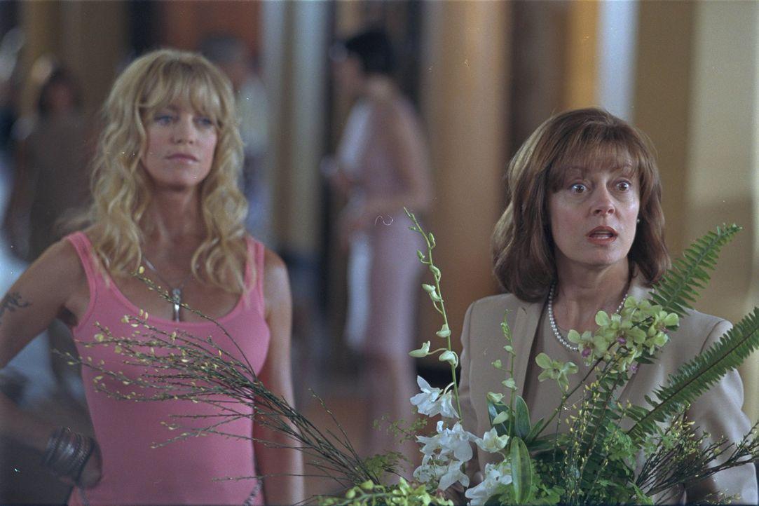Suzette (Goldie Hawn, l.) und Lavinia (Susan Sarandon, r.) waren in den Sechzigern als Rock-Groupies für ihre sexuellen Backstage-Großtaten bekannt.... - Bildquelle: 2002 Twentieth Century Fox Film Corporation. All rights reserved.