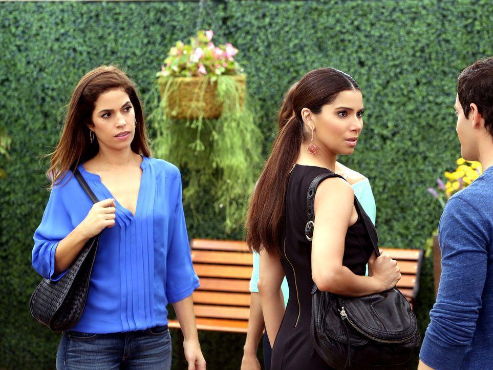Marisol (Ana Ortiz, l.) kann nicht fassen, dass Carmen (Roselyn Sanchez, M.) überlegt, für Geld ihren Chef Alejandro bei dem Journalisten Zach Fowle... - Bildquelle: ABC Studios
