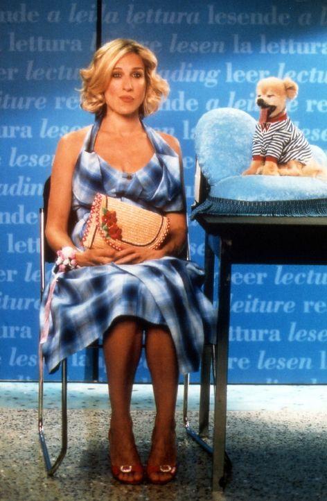 In San Francisco ist Carrie (Sarah Jessica Parker) auf ihrer Buchpräsentaion nicht allein. Sie wird von einem sehr populären Gast überrumpelt, de... - Bildquelle: Paramount Pictures