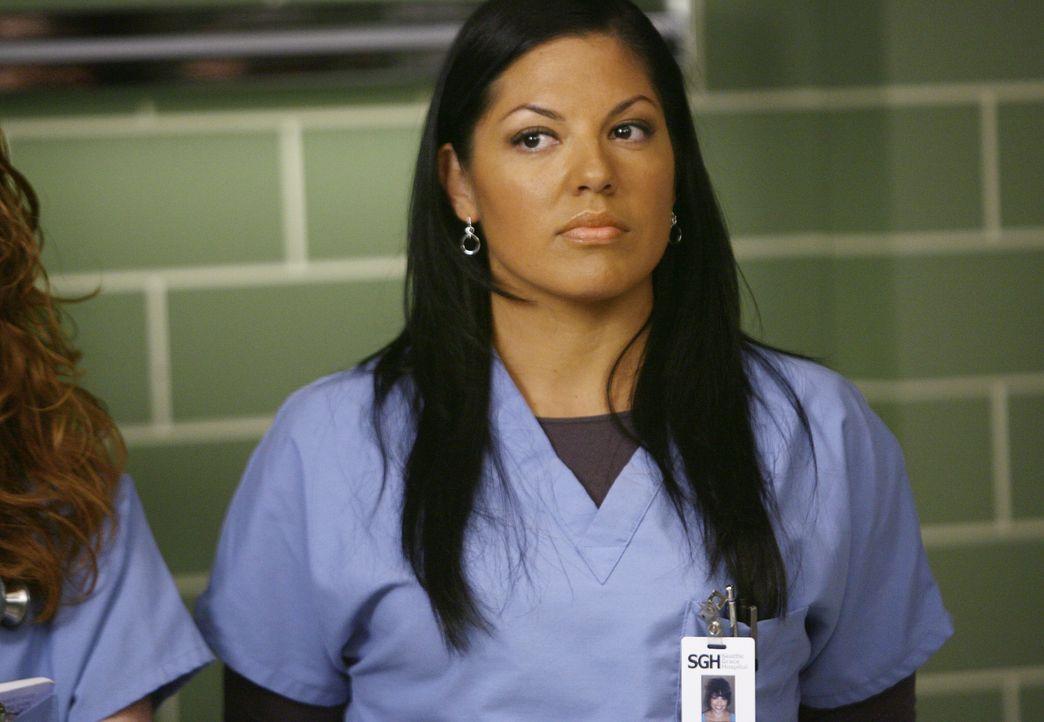 Die enge Zusammenarbeit zwischen Erica und Callie (Sara Ramirez) bringt die beiden wieder näher zusammen. Sie beschließen, ihrer Beziehung eine Chan... - Bildquelle: Touchstone Television