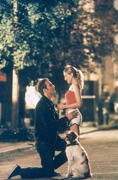 Aidan (John Corbett, l.) macht Carrie (Sarah Jessica Parker, r.) einen Heiratsantrag ... - Bildquelle: Paramount Pictures