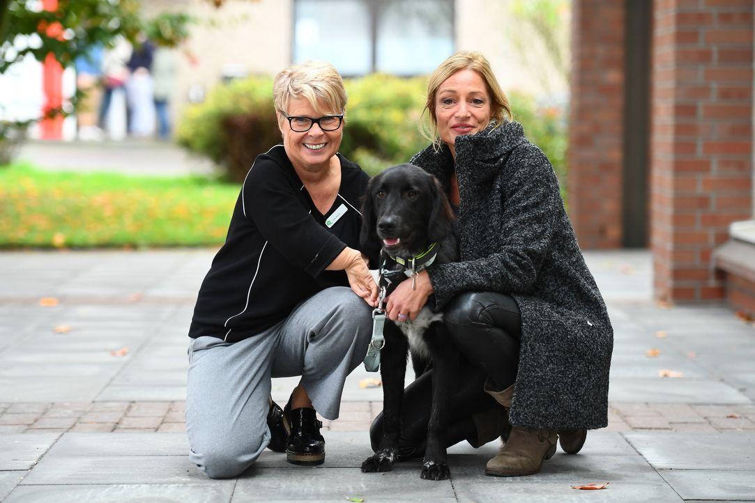 Hundetrainerin Sabine Hulsebosch (r.) findet in einem Tierheim Nero - sie möchte den verspielten Hund speziell für Silvias (l.) Bedürfnisse und Eins... - Bildquelle: Willi Weber SAT.1 / Willi Weber