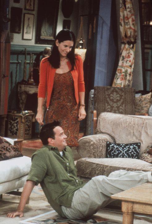 Chandler (Matthew Perry, vorne) und Monica (Courteney Cox, hinten) geraten bei der Planung der gemeinsamen Wohnung aneinander. - Bildquelle: TM+  2000 WARNER BROS.