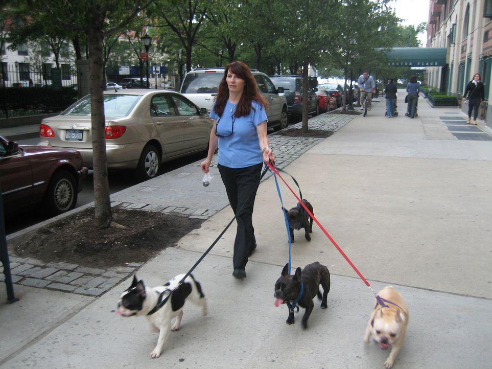 Die New Yorkerin Lynn ist ein richtiger Hundenarr. Sie besitzt gleich ein ganzes Hunderudel. Nur Hündin Tallulah bereitet ihr große Sorgen ... - Bildquelle: Rive Gauche Intern. Television