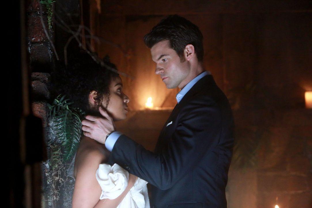 Ein unerwartetes Wiedersehen: Elijah (Daniel Gillies, r.) und Celeste (Raney Branch, l.) ... - Bildquelle: Warner Bros. Television