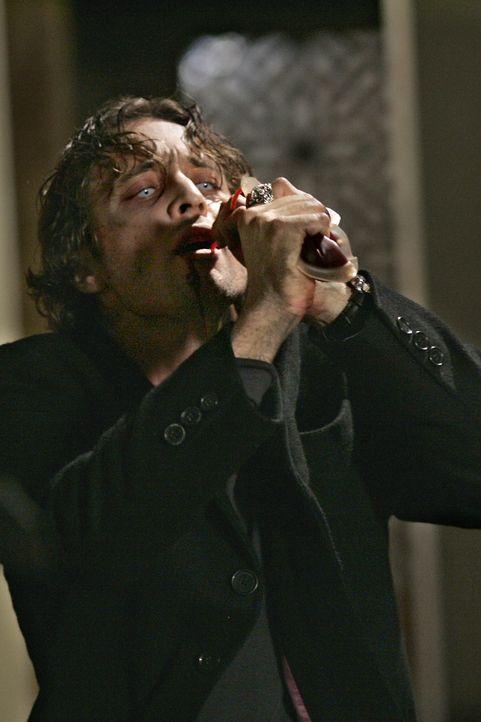 """Um nicht die Menschen anzusaugen, hat Mick (Alex O'Loughlin) eine andere Möglichkeit gefunden, an den """"roten Stoff"""" zu gelangen: Er trinkt Blutkonse... - Bildquelle: Warner Brothers"""