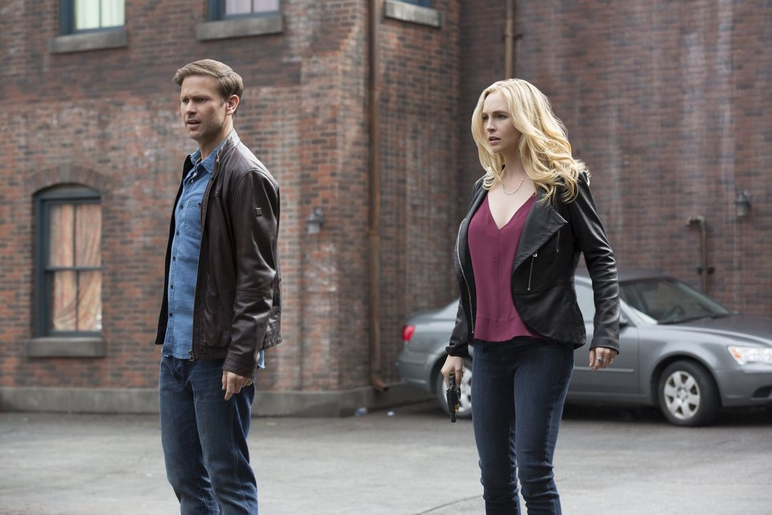 Lassen ihr ruhiges, geregeltes Leben zurück, um das von Bonnie zu retten: Alaric (Matthew Davis, l.) und Caroline (Candice King, r.) ... - Bildquelle: Warner Bros. Entertainment, Inc.