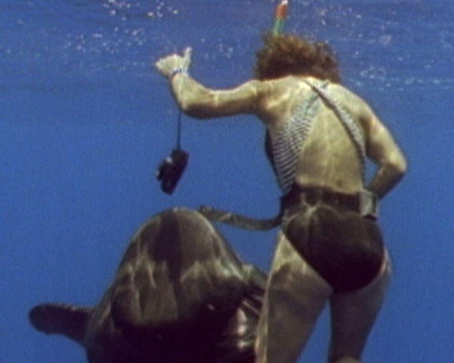 Lebensgefährlich: Bei einem Tauchgang wird Freediver Lisa Costello (Bild) von einem Wal in die Tiefen des Ozeans gezogen. Der Meeresriese hält sie u... - Bildquelle: 2011, The Travel Channel. L.L.C. All Rights Reserved.