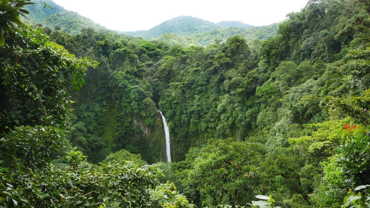 """Schon aus der Weite sehr beeindruckend: Der """"La Fortuna Wasserfall"""" in Costa Rica. - Bildquelle: 2016,The Travel Channel, L.L.C. All Rights Reserved"""