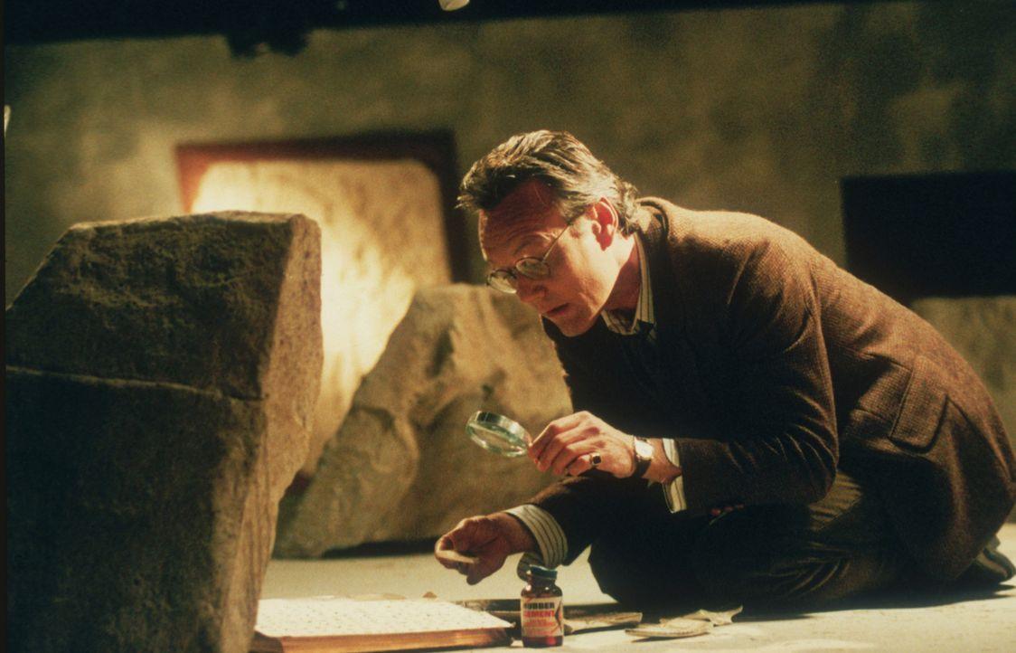 Giles (Anthony Stewart Head) macht eine interessante Entdeckung ... - Bildquelle: TM +   2000 Twentieth Century Fox Film Corporation. All Rights Reserved.
