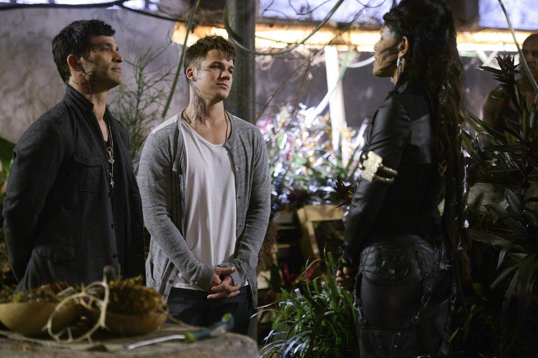 Castor (Johnathon Schaech, l.) und Roman (Matt Lanter, M.) stellen Vega (Merle Dandridge, r.) zur Rede und wollen so verhindern, dass sie und die Tr... - Bildquelle: 2014 The CW Network, LLC. All rights reserved.
