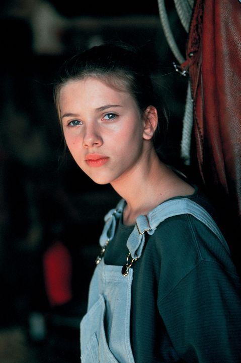 Der Pferdeflüsterer Tom Booker verändert nicht nur das Leben von Grace MacLean (Scarlett Johansson) ... - Bildquelle: Touchstone Pictures