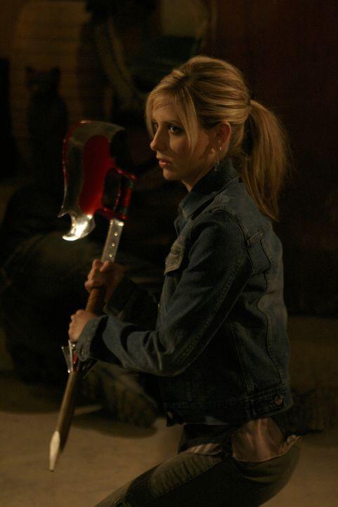 Als Buffy (Sarah Michelle Gellar) Calebs Weinkeller ausfindig machen kann, findet sie eine geheimnisvolle Streitaxt, die ihr unermessliche Kräfte ve... - Bildquelle: TM +   Twentieth Century Fox Film Corporation. All Rights Reserved.