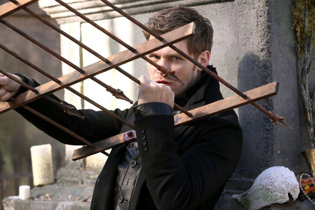 Klaus (Joseph Morgan) stellt sich seinem Bruder entgegen, doch dann kommt alles ganz anders ... - Bildquelle: Warner Bros. Entertainment, Inc