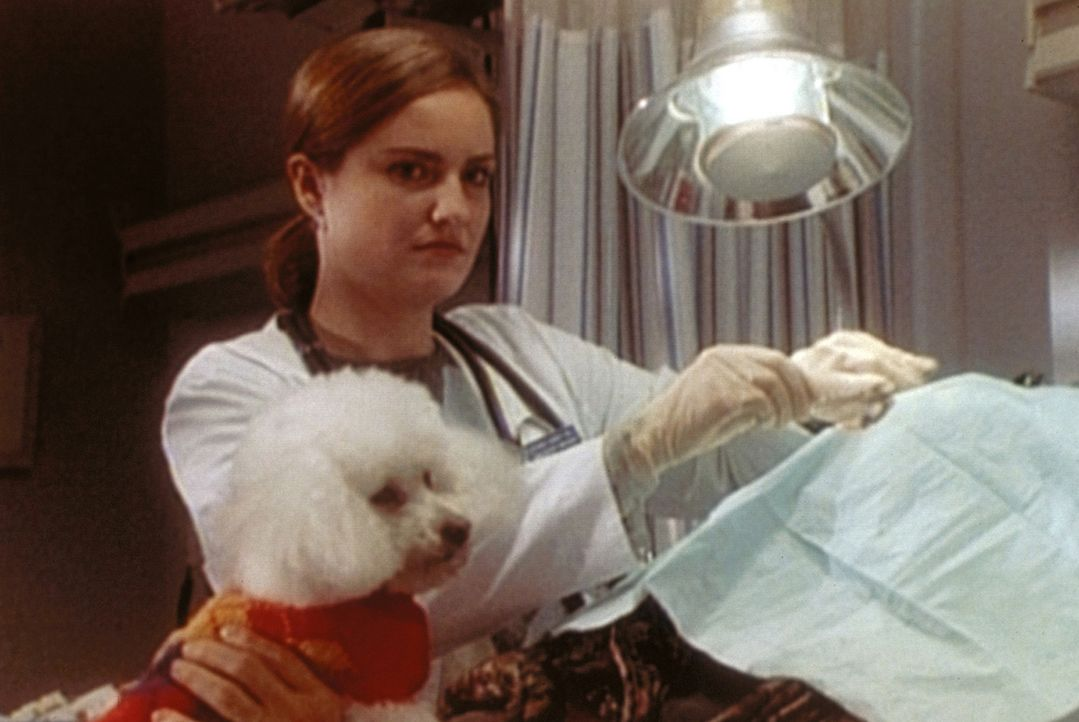 Dr. Lewis (Sherry Stringfield) ist nicht auf den Hund gekommen, aber sie hat es mit der militanten Mrs. Gainsley zu tun. - Bildquelle: TM+  WARNER BROS.