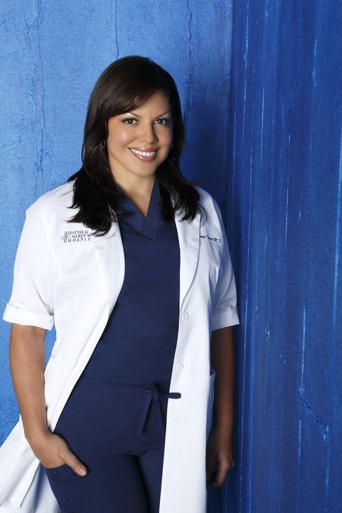 (9. Staffel) - Als Ärztin muss Dr. Callie Torres (Sara Ramirez) täglich mit neuen Überraschungen rechnen ... - Bildquelle: ABC Studios