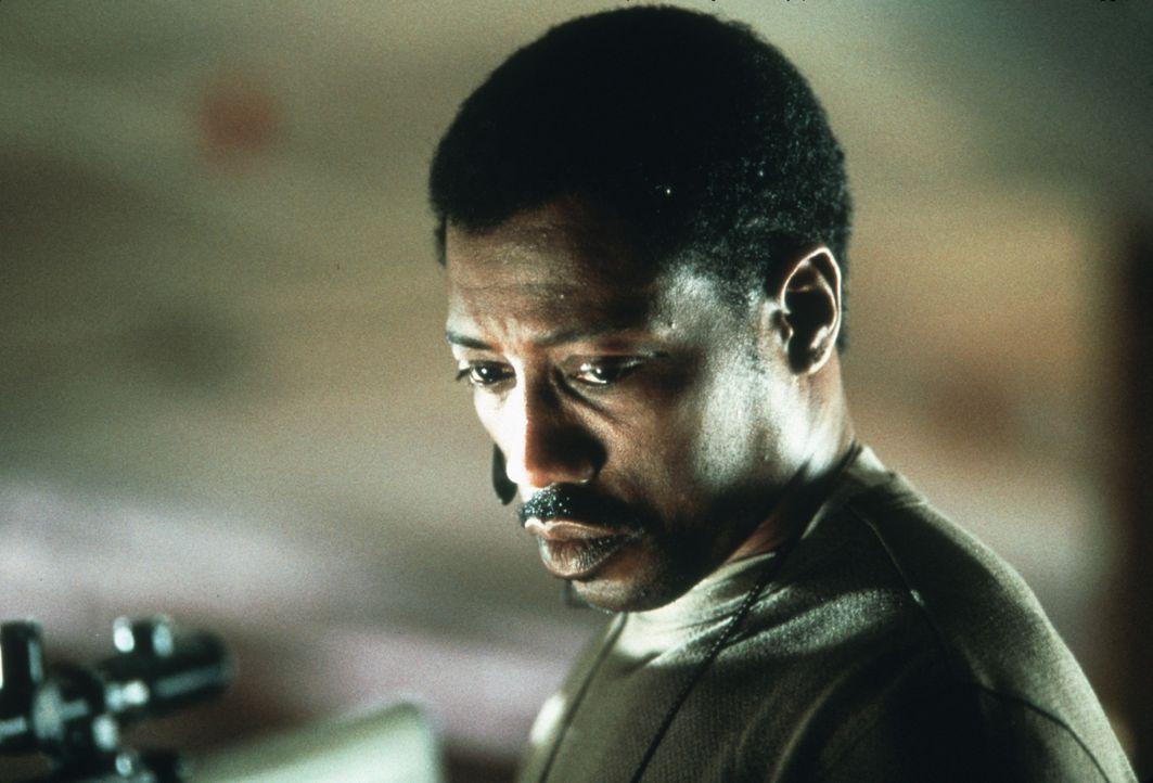 Nachdem seine geliebte Tochter ermordet wurde, hat Joe (Wesley Snipes) nur noch eins im Sinn: Rache! - Bildquelle: Kinowelt
