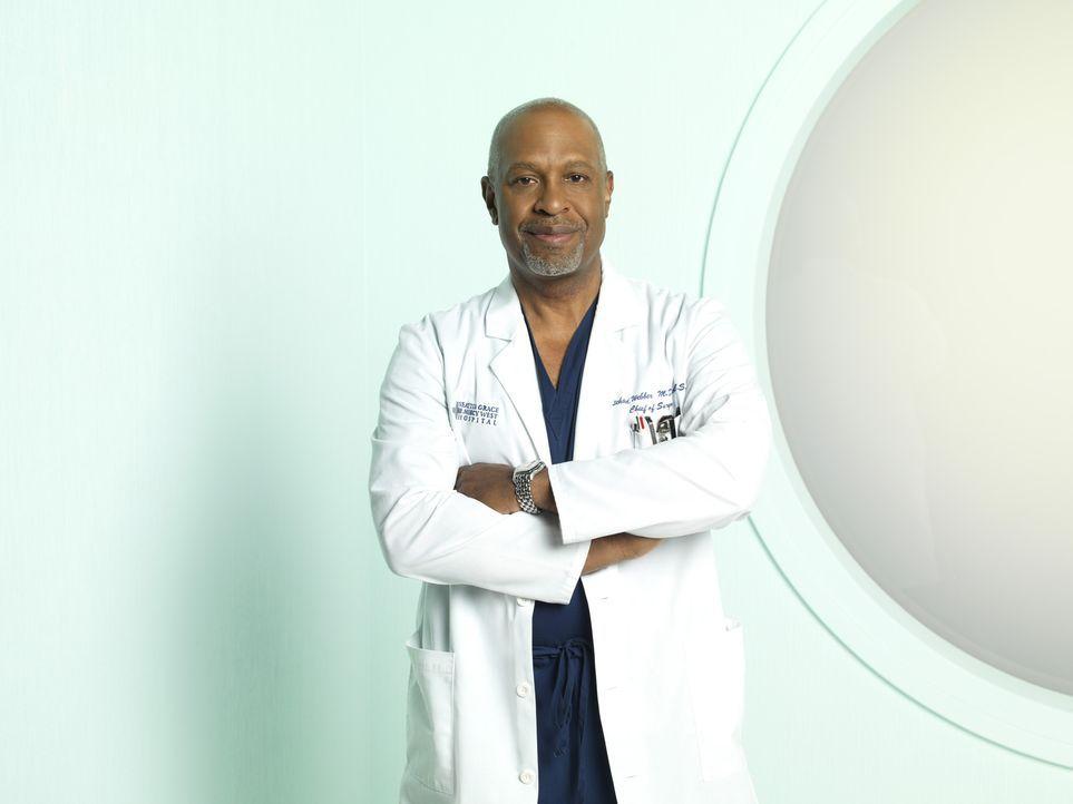 (8. Staffel) - Beruflich weiß Dr. Richard Webber (James Pickens, Jr.) immer, was er tut ... - Bildquelle: ABC Studios