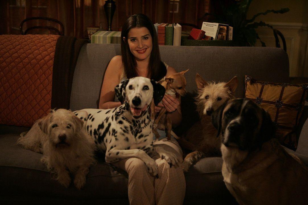 Robin (Cobie Smulders) kann ihre Gefühle für Ted nicht leugnen, dennoch muss sie schmerzhaft zur Kenntnis nehmen, dass er noch in einer Beziehung st... - Bildquelle: 20th Century Fox International Television