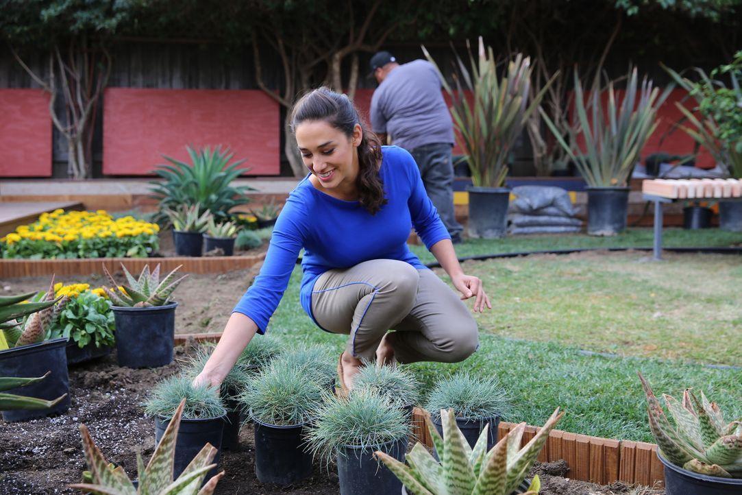 In diesem Garten muss Sara wirklich alles geben, denn die Besitzer wünschen sich einen schönen Garten, den sie aber auch zum Anpflanzen von Obst und... - Bildquelle: 2014, DIY Network/Scripps Networks, LLC. All RIghts Reserved.