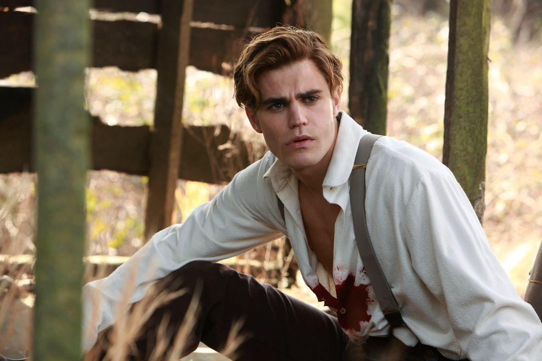 Stefan (Paul Wesley) wundert sich, warum er nicht tot ist. Doch für sein Überleben muss er einen hohen Preis zahlen ... - Bildquelle: Warner Bros. Television