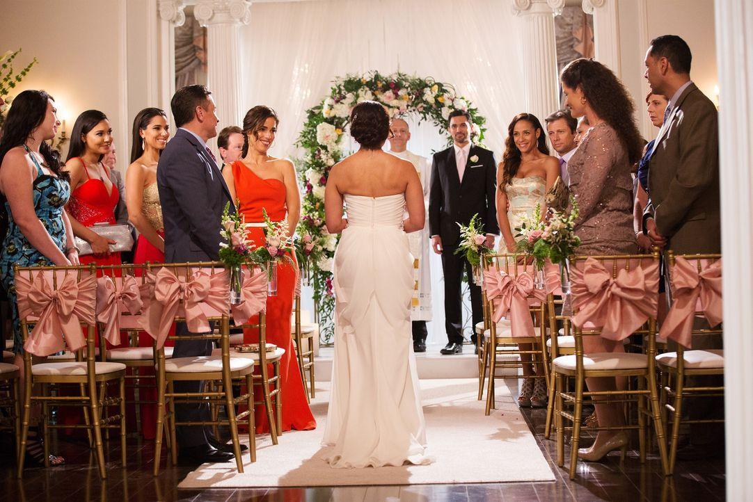 Wird die Hochzeit von Zoila (Judy Reyes, M.) und Javier (Ivan Hernandez, 6.v.r.) wirklich so ablaufen, wie es sich das Brautpaar und die Gäste Blanc... - Bildquelle: Bob Mahoney 2015 American Broadcasting Companies, Inc. All rights reserved.