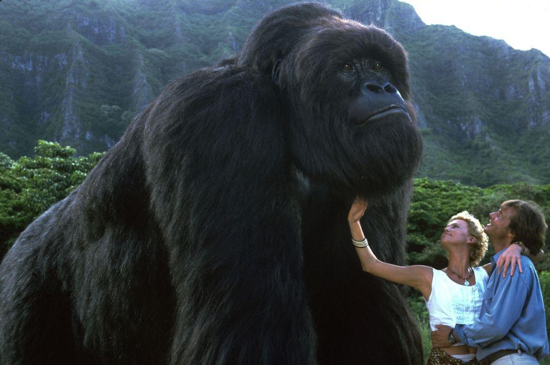 Eines Tages lässt sich die junge Jill (Charlize Theron, l.) von dem Zoologen Gregg O'Hara (Bill Paxton, r.) dazu überreden, Gorilla Joe in einen N... - Bildquelle: Ron Batzdorff Disney Enterprises Inc.