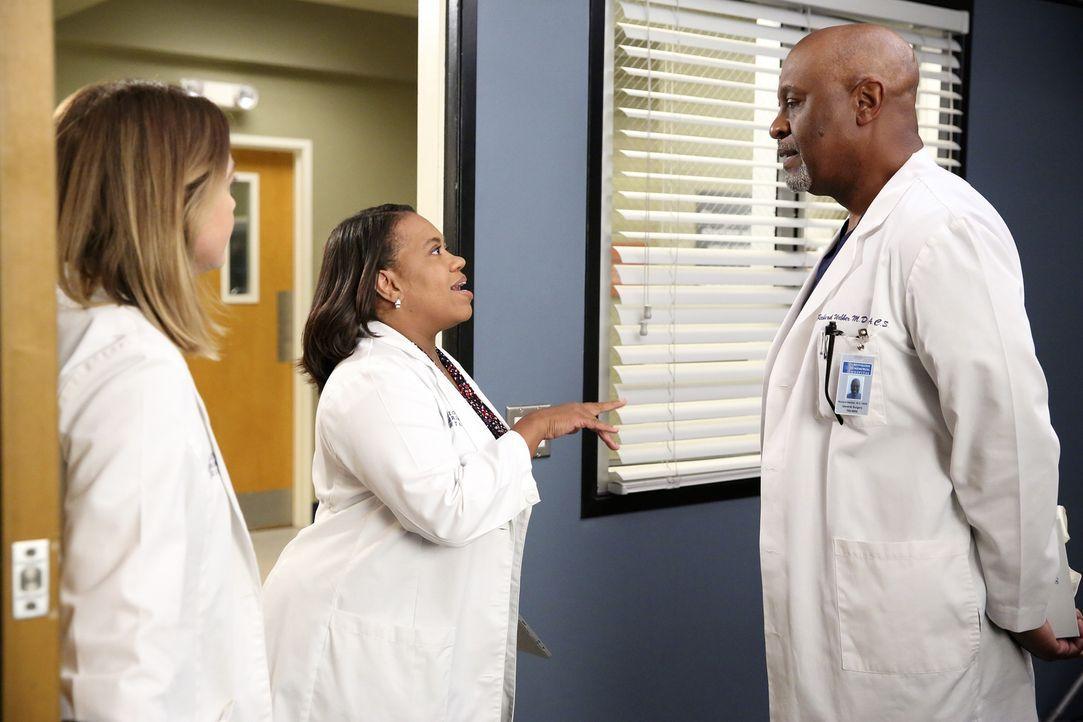 Haben täglich mit ganz besonderen Aufgaben zu kämpfen: Meredith (Ellen Pompeo, l.), Bailey (Chandra Wilson, M.) und Richard (James Pickens, Jr., r.)... - Bildquelle: ABC Studios