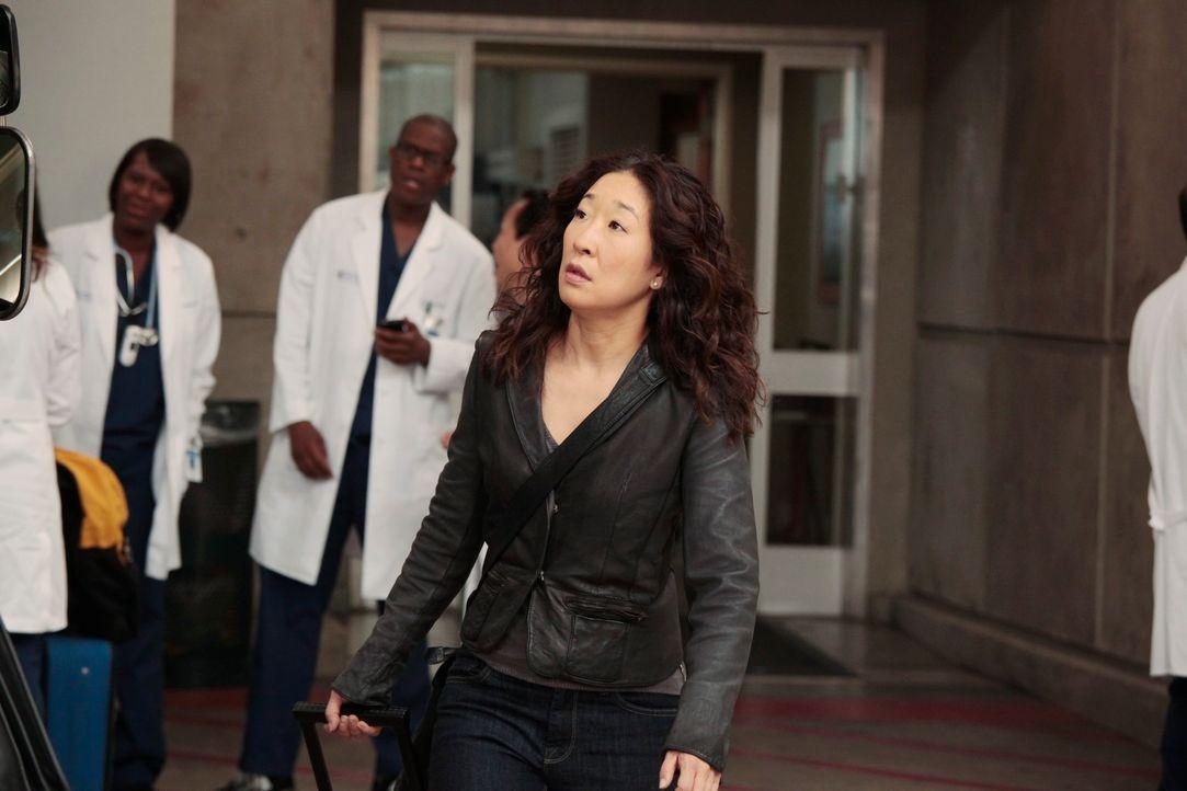 Die mündlichen Prüfungen stehen an und Cristina (Sandra Oh, M.) reist gemeinsam mit Meredith, Alex, Jackson und April nach San Francisco ... - Bildquelle: Touchstone Television