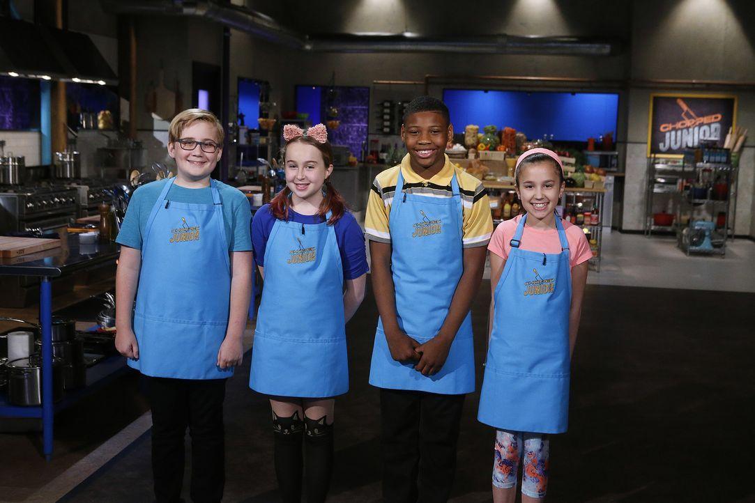 Im Kampf um das begehrte Preisgeld von 10.000 Dollar müssen die jungen Kandi... - Bildquelle: Jason DeCrow 2016,Television Food Network, G.P. All Rights Reserved