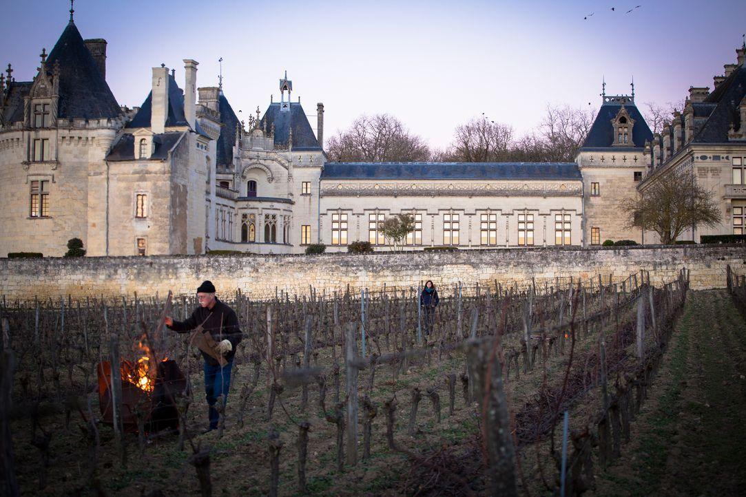Eigentlich wollten sie ein Teambuilding-Seminar auf einem Weingut besuchen, doch als Adèle (Juliette Roudet, r.) und ihre Kollegen erfahren, dass di... - Bildquelle: Eloïse Legay 2016 BEAUBOURG AUDIOVISUEL