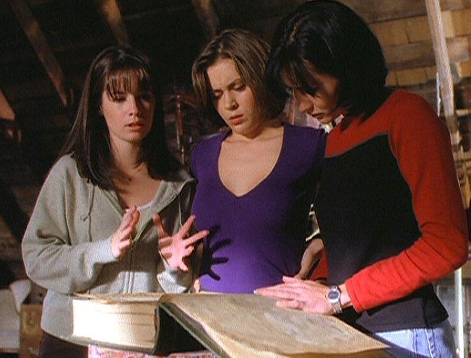 Piper (Holly Marie Combs, l.), Phoebe (Alyssa Milano, M.) und Prue (Shannen Doherty, r.) finden im Buch der Schatten eine Lösung ihres Problems ... - Bildquelle: Paramount Pictures