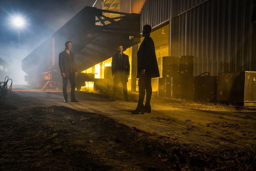 Tappen direkt in Ayas (Tracy Ifeachor, r.) Falle: Klaus (Joseph Morgan, l.) und Elijah (Daniel Gillies, M.) ... - Bildquelle: Warner Bros. Entertainment, Inc.