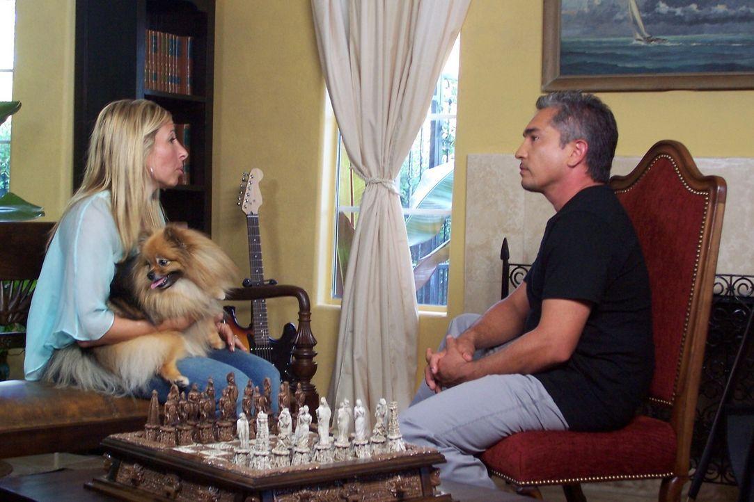 Der Hundeflüsterer Cesar Millan (r.) muss sich um die verwöhnte Hundedame Prada kümmern, die von ihren Besitzern alles bekommt, was das Hundeherz... - Bildquelle: Rive Gauche Intern. Television