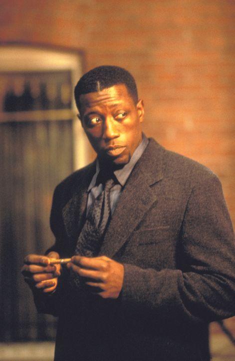 Seine Gegner scheuen das Licht: Detective Harlan Regis (Wesley Snipes) ... - Bildquelle: Warner Bros.