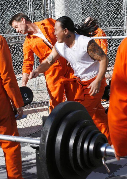 Mike (James Denton, l.) wird im Gefängnis von anderen Häftlingen zusammengeschlagen ... - Bildquelle: 2005 Touchstone Television  All Rights Reserved