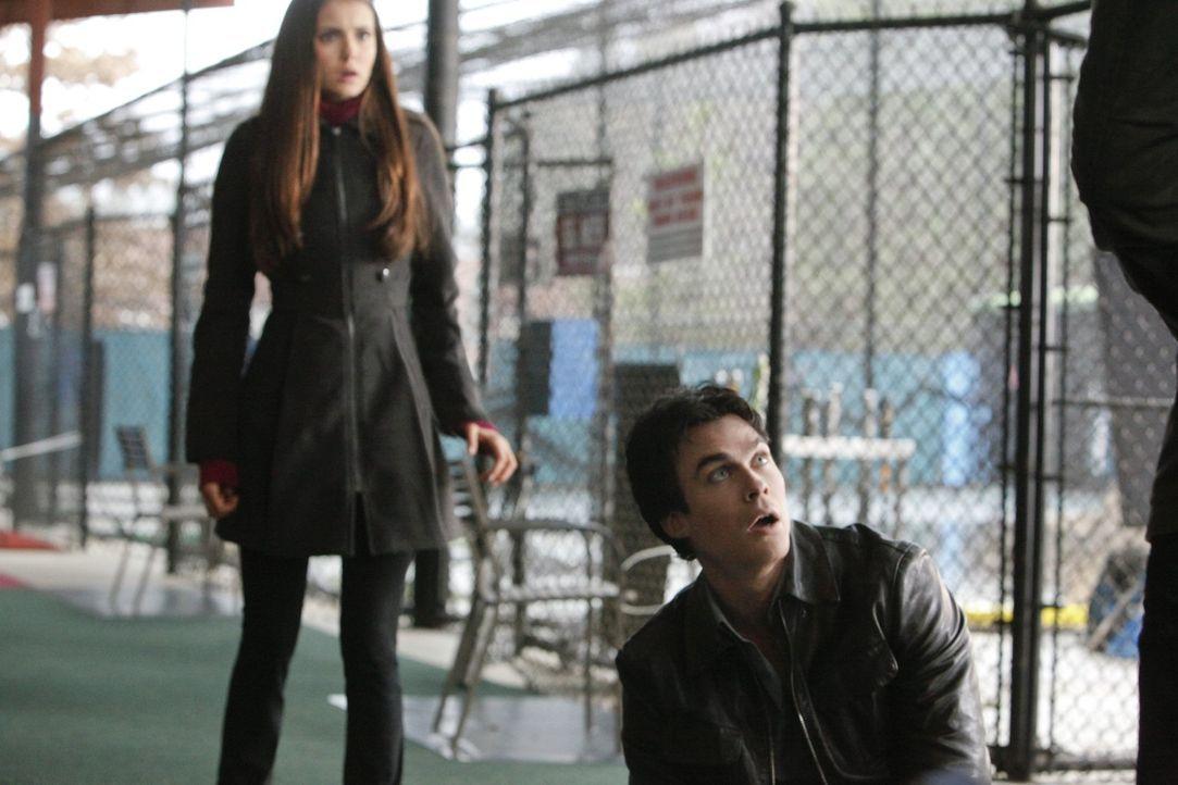 Auf der Reise nach Denver, will Elena (Nina Dobrev, l.) sich über ihre Gefühle für Damon (Ian Somerhalder, r.) klarwerden ... - Bildquelle: Warner Brothers