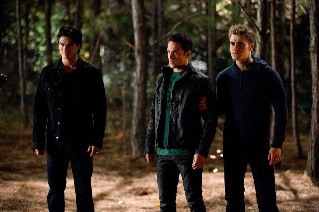Damon (Ian Somerhalder, l.) und Stefan (Paul Wesley, r.) wollen durch Tylers (Michael Trevino, M.) Gefangennahme Carolines Freigabe erpressen. Wird... - Bildquelle: Warner Brothers