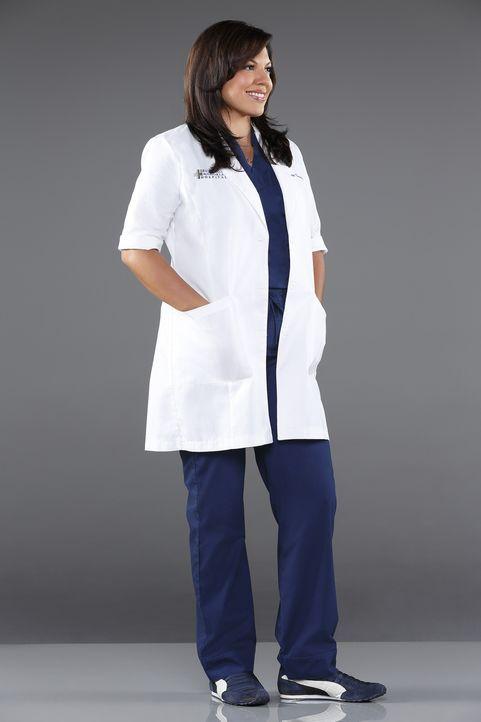 (11. Staffel) - Als Ärztin muss Dr. Callie Torres (Sara Ramirez) täglich mit neuen Überraschungen rechnen ... - Bildquelle: ABC Studios