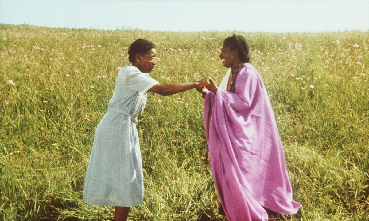 Lang ersehntes Wiedersehen: Nach jahrelanger Trennung sehen sich Celie (Whoopi Goldberg, l.) und ihre Schwester Nettie (Akosua Busia, r.) zum ersten... - Bildquelle: Warner Bros.