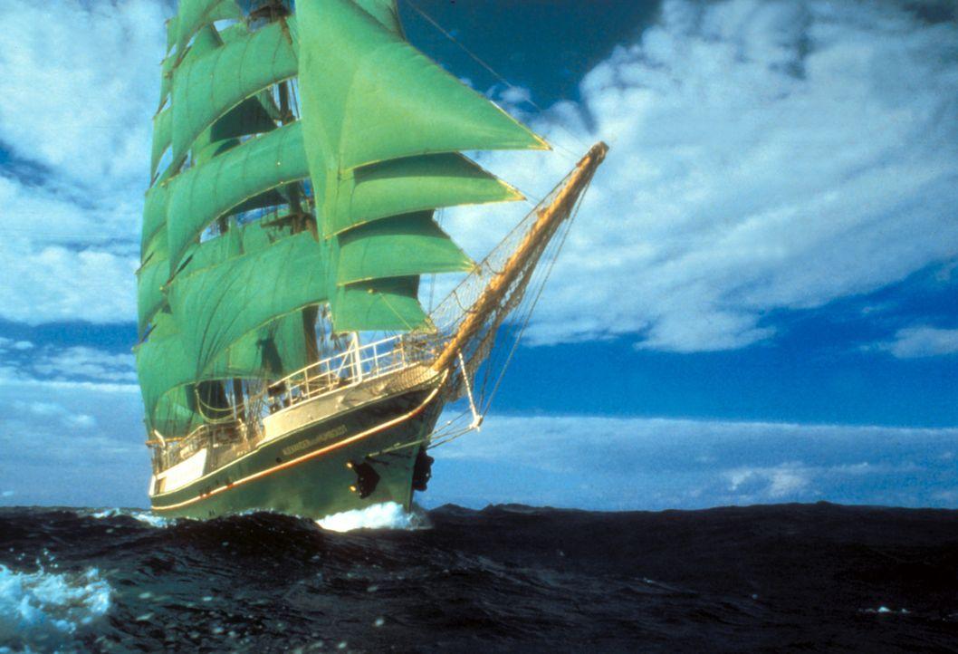 Die Green Sails, ein hochmodern ausgerüstetes Schiff im Dienste der Umweltschützer ... - Bildquelle: Cinetel Films
