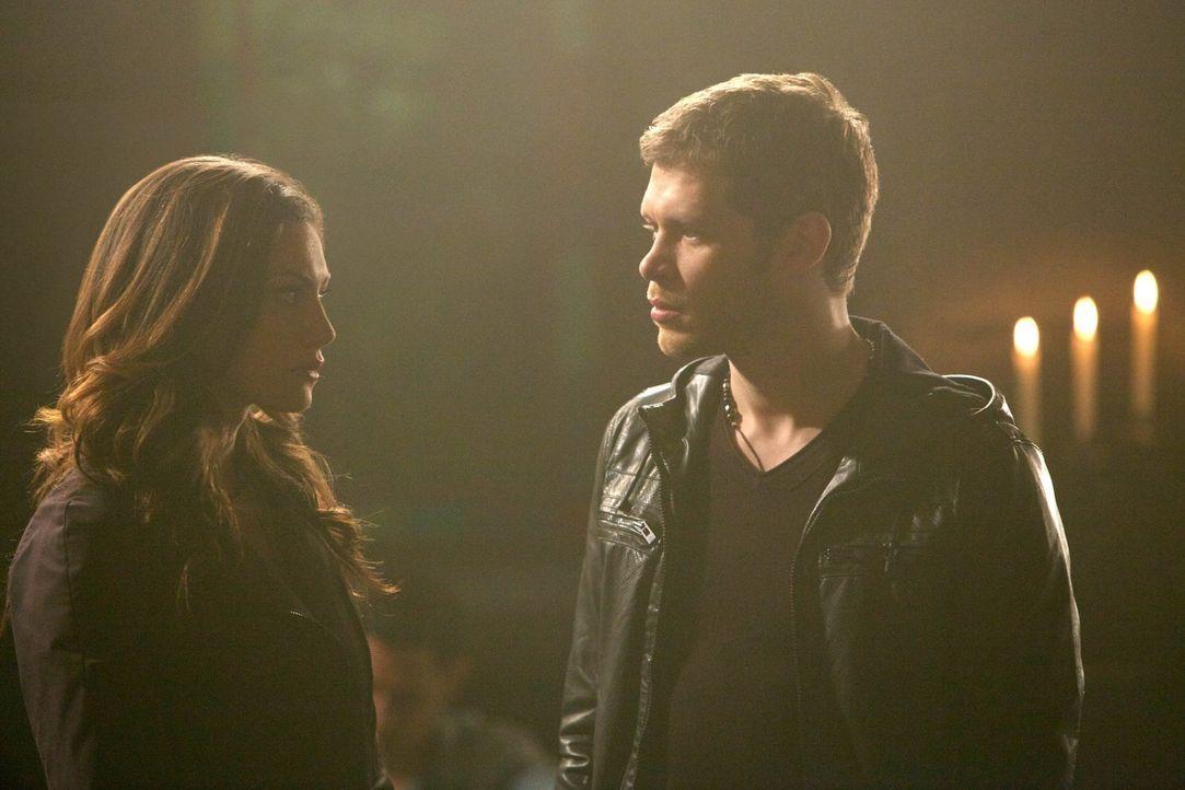 Immer wieder entdeckt Hayley (Phoebe Tonkin, l.) neue Seiten an Klaus (Joseph Morgan, r.), die alles nur noch komplizierter machen ... - Bildquelle: Warner Bros. Television