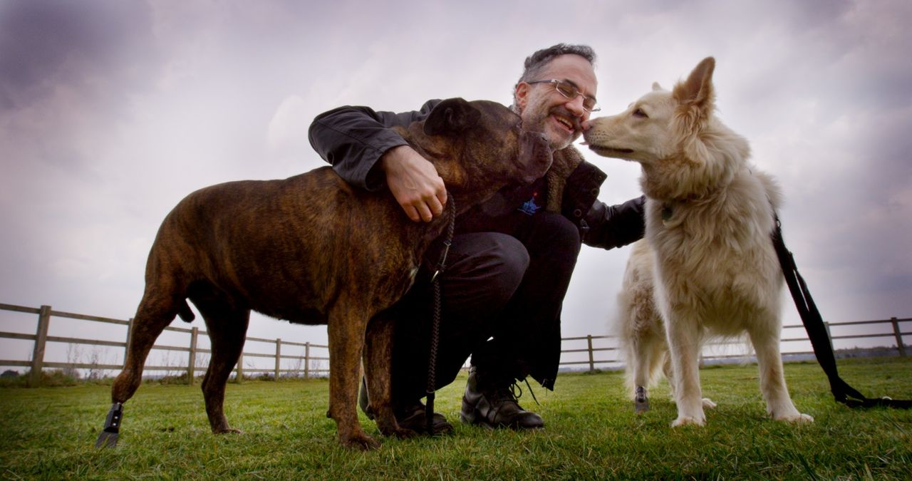 Diesen beiden Hunden konnte Noel Fitzpatrick dank modernster Techniken und unglaublichen Prothesen schon helfen ... - Bildquelle: Zodiak Rights 2015