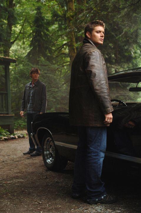 Nachdem ein junges Mädchen spurlos in einem See verschwunden ist, werden Sam (Jared Padalecki, l.) und Dean (Jensen Ackles, r.) neugierig und machen... - Bildquelle: Warner Bros. Television