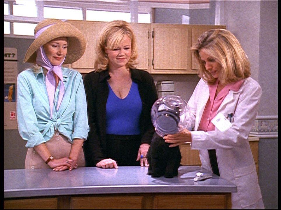 Zelda (Beth Broderick, M.) und Hilda (Caroline Rhea, l.) haben Salem, der in einem Bonbonglas stecken geblieben ist, zu der Tierärztin Dr. Werner (... - Bildquelle: Paramount Pictures