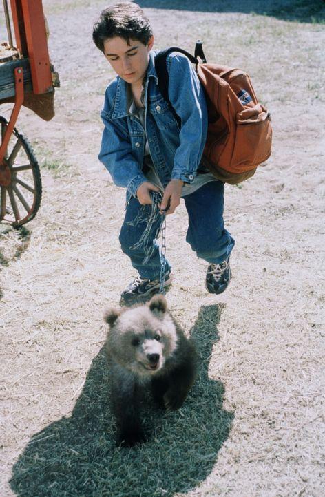 Überglücklich befreit Jimmy (Miko Hughes) den kleinen Bären aus dem Zirkus. Doch nun beginnt eine gefahrvolle Reise zu den Grizzly Mountains ... - Bildquelle: Miracle Entertainment