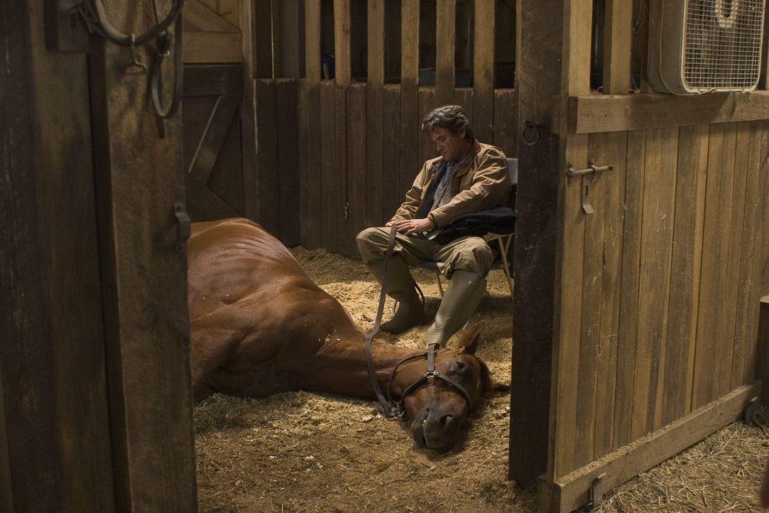 Ben (Kurt Russel) weigert sich das Pferd Sonya, aufgrund eines gebrochenen Beines zu töten, wie es sein Arbeitgeber wünscht. - Bildquelle: Epsilon Motion Pictures