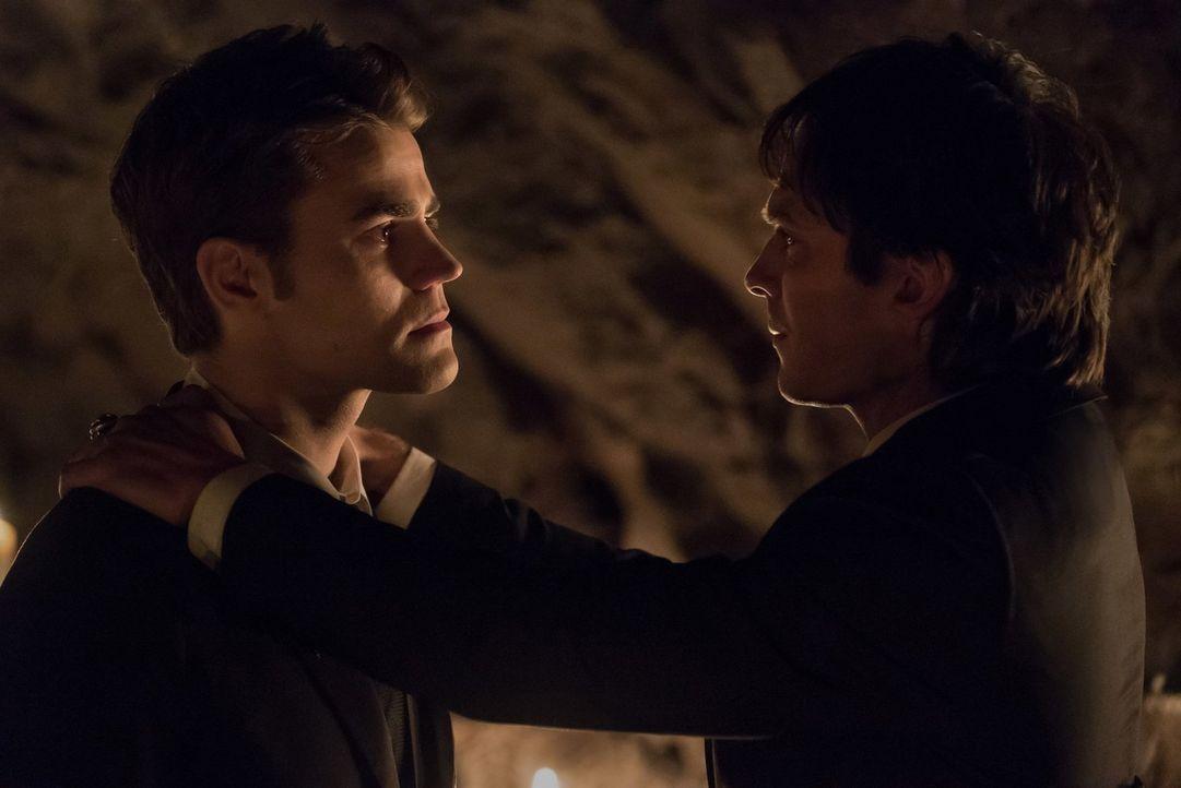 Der Kampf um Mystic Falls und alle, die ihnen lieb sind, fordert einen grausamen Preis von den Brüdern Stefan (Paul Wesley, l.) und Damon (Ian Somer... - Bildquelle: 2016 Warner Brothers